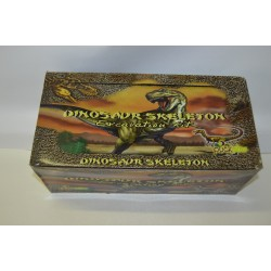 6 SQUELETTES EXCAVATION DINOSAURE